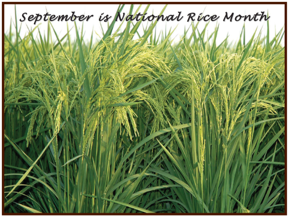 9september is rice month